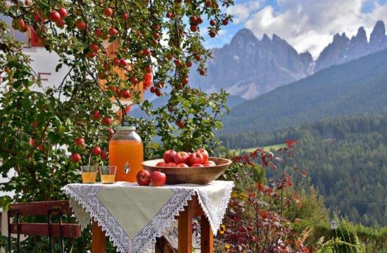 Gsoihof's autumn and Törggele weeks